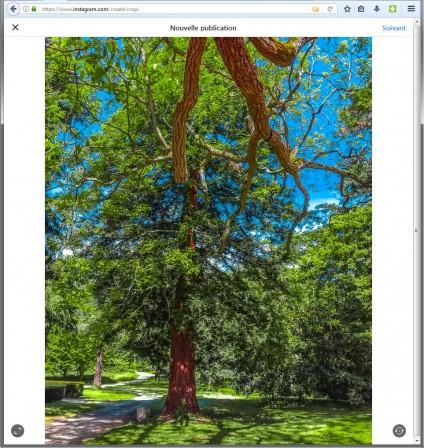 Recadrer photo dans Instagram dans Firefox avec User-Agent Switcher sur Android