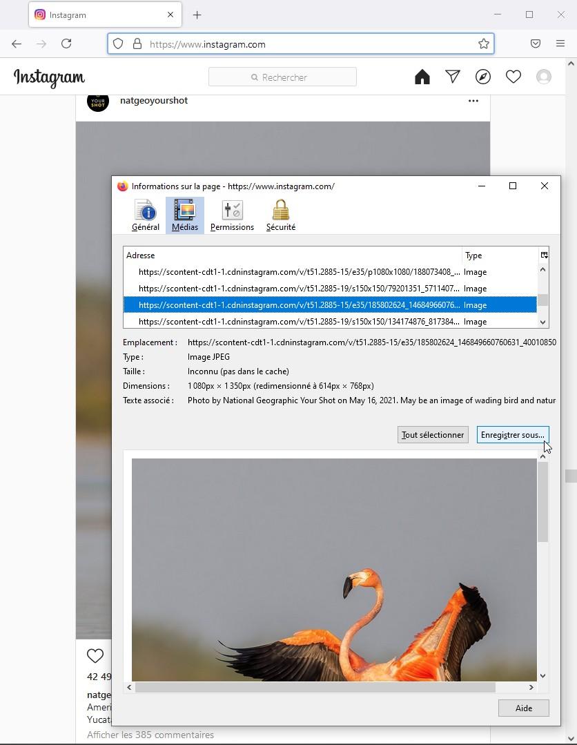 Enregistrer une photo d'Instagram avec la boite d'informations sur la page de Firefox 89