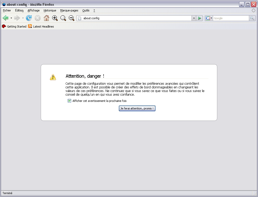 http://blogzinet.free.fr/images/attention_danger-page-firefox3.0pre.png