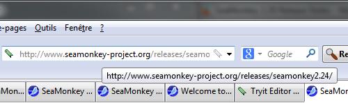 URL en infobulle au survol de la barre d'adresse dans SeaMonkey 2.29